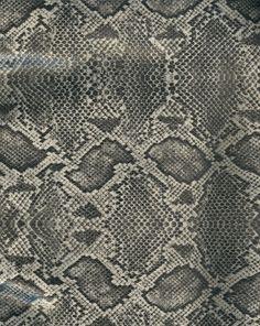 Snake skin - gray and black by paintresseye.deviantart.com on @deviantART