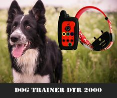 #kutya #vadászkutya #vadászat #hunter #hunting #huntingdog #kutya #dog #gps #nyomkövetés Trainers, Personalized Items, Dogs, Products, Tennis, Pet Dogs, Doggies, Athletic Shoes, Gadget