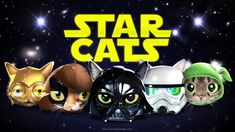 Watch the brand-new teaser for Star Wars: The Rise of Catwalker. More Star Wars videos with cats: Star Wars Cats - Jedi Kitten. Funny Cat Fails, Funny Animal Videos, Funny Cats, Funny Animals, Star Wars Costumes, Bad Feeling, Star Wars Humor, Try Not To Laugh, For Stars