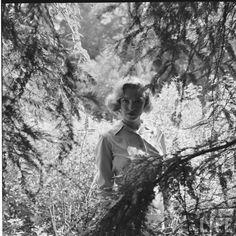 Marilyn Monroe in nature 8 august 1950, famous celebrity in film, fashion, art, music,beautiful fame, the wall of fame, collected by marald marijnissen, www.marijnissenfotografie.nl