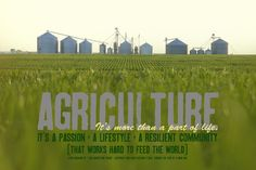 What does Agriculture mean to you?