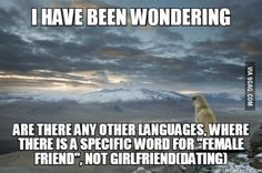 In Afrikaans we have vriendin(female friend) and vriend(male friend)