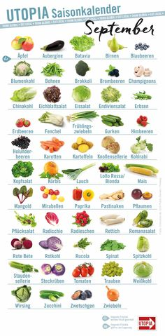 Season calendar October: These fruits and vegetables are now from the region - Saisonkalender Obst & Gemüse Diet And Nutrition, Healthy Diet Tips, Proper Nutrition, Healthy Eating, Healthy Recipes, Holistic Nutrition, Healthy Protein, Nutrition Guide, Pasta Nutrition
