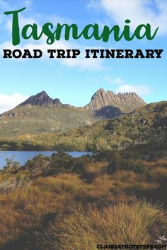 If you're thinking of a Tasmania road trip, whether you're spending 1 week in Tasmania, 2 weeks in Tasmania or 3 weeks in Tasmania check out this Tasmania itinerary for all of the best things to do in Tasmania. Tasmania Road Trip, Tasmania Travel, Ocean Photography, Travel Photography, Photography Tips, Australian Road Trip, Australia Travel, Queensland Australia, Western Australia
