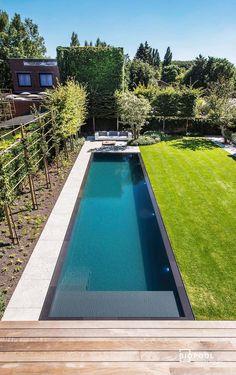 Backyard Pool Designs, Small Backyard Pools, Small Pools, Swimming Pools Backyard, Swimming Pool Designs, Outdoor Pool, Pool Decks, Lap Pools, Backyard Pool Landscaping