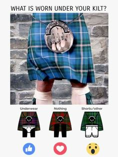 Flag Of Scotland, Underwear, Shorts, Type 3, Theater, Facebook, Theatres, Teatro, Lingerie