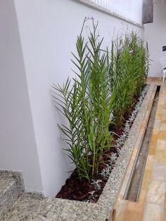 Garden Wall Designs, Front Yard Garden Design, Back Garden Landscaping, Garden Pool, Concrete Walkway, Design Jardin, Side Garden, Home And Garden, Backyard