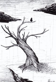 It was SO annoying to make the darkness in the tree itself !!! I NEED new fineliners to draw Q_Q Thiker ones !! #Inktober#Inktober2017#Crooked