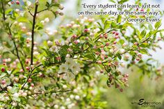 """Why Education Matters: """"Every student can learn, just not on the same day, or the same way."""" – George Evans"""