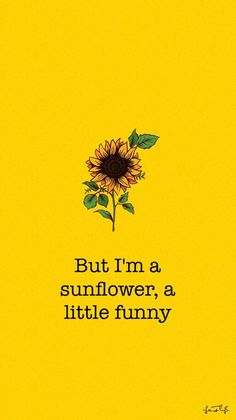 Cute Wallpaper: Sunflower Movie: Sierra Burgess Is A Loser Et Wallpaper, Wallpaper Iphone Cute, Tumblr Wallpaper, Aesthetic Iphone Wallpaper, Screen Wallpaper, Wallpaper Quotes, Cute Wallpapers, Cute Backgrounds, Aesthetic Backgrounds