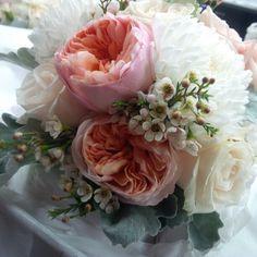 Bridal bouquet by #LiliesWhiteFloralStudio  Juliet garden roses, chrysanthemums, wax flower, vandella roses, dusty miller.