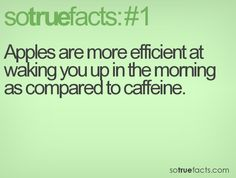 Especially if someone throws one at your head because there isn't any coffee!