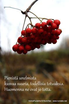 RunoTalo: Voimapuutarha kortit vko 42 Finnish Words, Affirmation Cards, Enjoy Your Life, Note To Self, Affirmations, Poems, Motivational Quotes, Poetry, Motivating Quotes