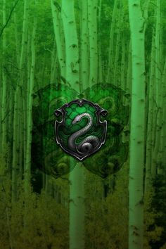 Quidditch Team Poster: Slytherin by TheLadyAvatar on DeviantArt Slytherin House, Slytherin Pride, Hogwarts Houses, Ipod Wallpaper, Slytherin Aesthetic, Harry Potter Wallpaper, Harry Potter Art, Dramione, Draco Malfoy