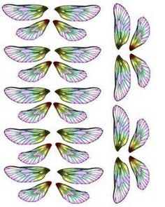 transparency wing sheets - Yahoo Image Search Results