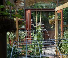 Visite d'une serre aquaponique urbaine - Le Jardin Comestible