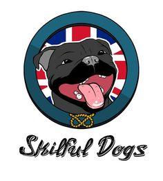 http://www.skilfuldogs.it