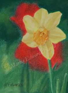 Spring Daffodil. Painted in soft pastels on sanded paper. Prints and cards can be purchased without the watermark on my website, Fine Art America. All work and images are the sole property of Marna Edwards Flavell and no person, company or entity has the right to copy, reproduce or duplicate in any manner without the written and expressed permission of the owner, Marna Edwards Flavell. You may purchase copies of the posted image by going to her website on Fine Art America.