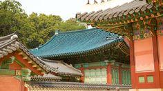 Produkt 17 von 17 wird angezeigt Changdeok-Palast - Seoul (und Umgebung) - Tourism Media