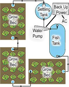 "Something to include - Aquaponics. Could be built in a zillion ways, indoors or out. This shows the overall system components or ""program"" view"