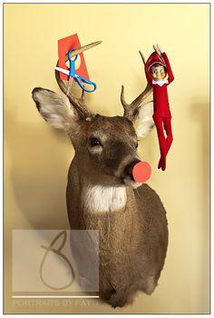"Elf on the Shelf : : The daily antics of the VanHuizen elf ""Buddy"" « Portraits by Patti Blog"