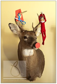"Elf on the Shelf : : The daily antics of the VanHuizen elf ""Buddy"" « Portraits by Patti Blog"