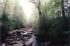 Alum Cave Trail ...one of my favorite trails in the Smoky Mountains!!