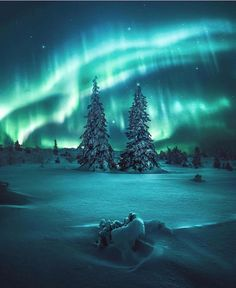 New post on travel-story Best Picture For Aurora borealis northern lights party For Your Taste You are looking for something, and it is going to tell you exactly what you are looking for, and you didn Beautiful Sky, Beautiful Landscapes, Beautiful Norway, Landscape Photography, Nature Photography, Night Photography, Landscape Photos, Scenic Photography, Newborn Photography