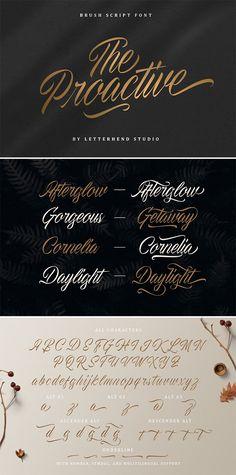 The Proactive Script Font Script Typeface, Calligraphy Fonts, Website Header, Signature Fonts, Brush Script, Retro Font, Handwriting Fonts, Writing Styles, All Fonts