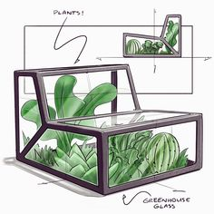 greenhouse chair for all your succulents, shoutout to Justin Kornely for the ide… greenhouse chair for all your succulents, shoutout to Justin Kornely for the idea . sketched on an iPad Pro with . view all of…
