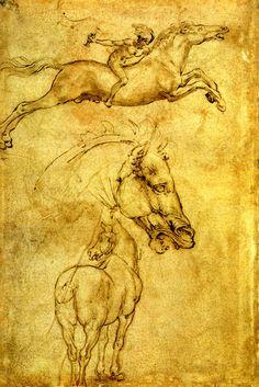 STUDIES OF HORSES BY LEONARDO DA VINCI REPRO #Vintage