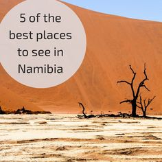 My 5 favorite places in Namibia and why I love them so much: canyon, sand dunes, unique landscapes and wildlife