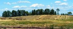 Hay harvest in full swing.  Photo by CAAHP Educator, Sandy Buxton