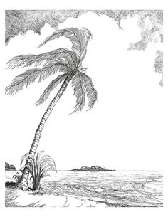 Breezy Palm Tree 12x14 black ink drawing on white by RayRuebyarts, $75.00