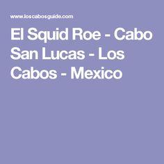 El Squid Roe - Cabo San Lucas - Los Cabos - Mexico Cabo San Lucas, Clothes Line, Restaurant Bar