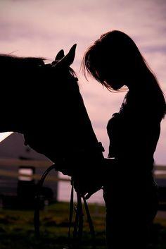Fine Art Photography Print Equestrian Silhouette by JayeTatone, Pretty Horses, Horse Love, Beautiful Horses, Beautiful Mind, Equine Photography, Fine Art Photography, Silouette Photography, Amazing Photography, Horse Girl Photography