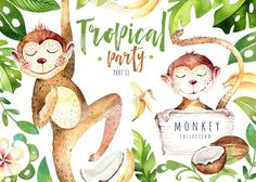 Tropical party II. Monkey collection by Peace ART on @creativemarket
