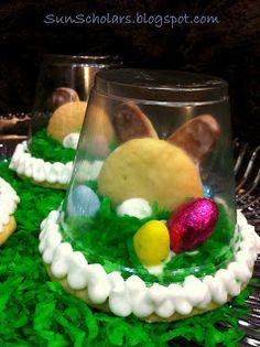 Sun Scholars: Easter Sugar Cookie Globe