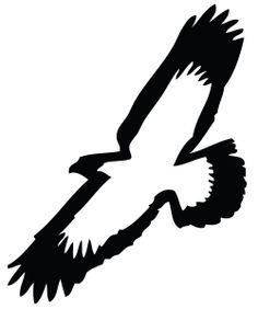 Eagle/Hawk logo - would work with bleach out on t-shirts for soar theme