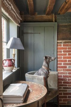 lulu klein: Interior design │ Modern English country  Pretty dog