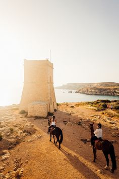 Horseriding in Malta Europe, Online Travel, Travel Goals, Horse Riding, Places To Go, Destinations, Horses, Adventure, Architecture