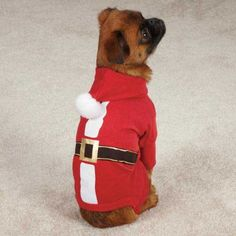 Casual Canine Santa Pajama, XX-Small, Red * Be sure to check out this awesome product. (This is an affiliate link) #Doggies
