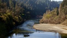 Russian River Valley, best camping spot in wine country. Bodega Bay Camping, Sonoma County California, Valley California, Northern California, Camping Trailer For Sale, Camping Trailers, Camping In Pennsylvania, Minnesota Camping, California