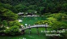 Japanese Green Park (Zen) at night HD - High Resolution Print, Nature Print, Wall Art, Art Photography, Nature Photography, Tokyo Print