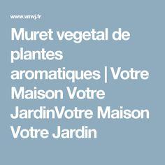 Muret vegetal de plantes aromatiques | Votre Maison Votre JardinVotre Maison Votre Jardin