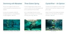 What is it like actually swimming with the Manatees of the Crystal River - the bad, the good and the fantastic. Plus all you need to know about the simply incredible Three Sisters Spring and finally a personal opinion on the overall Crystal River manatee experience...