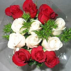 Garden Flowers For Those Of Us Who Have More Than One Cherished Person, Send Multiple Bouquets At The Best Prices. Red And White Roses, Red Roses, Wholesale Roses, Dozen Roses, Organic Roses, Growing Roses, Planting Roses, Dry Leaf, Carnations