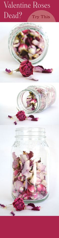 Rework your dead valentine roses by creating a pretty rose petal jar