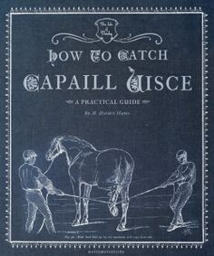 The Practical Guide: How to Catch a Capaill Uisce
