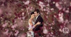 A collection of our favourite Auckland weddings, plus international wedding photography, and Auckland wedding videography. Bride And Groom Pictures, Wedding Pictures, Cherry Blossom Wedding, Videography, Wedding Ceremony, Wedding Photography, Couple Photos, Inspiration, Image